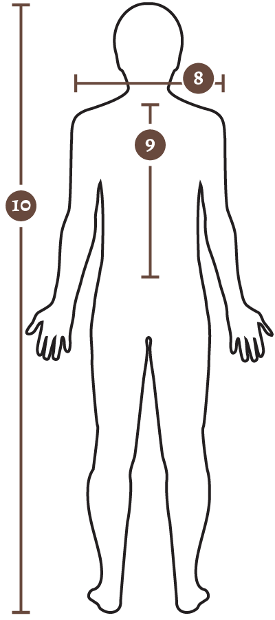 body measurement - back