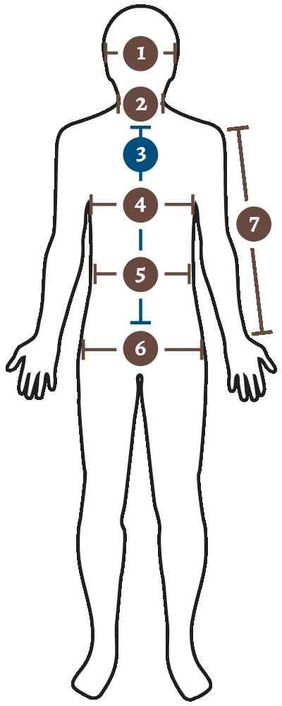 body measurement - front